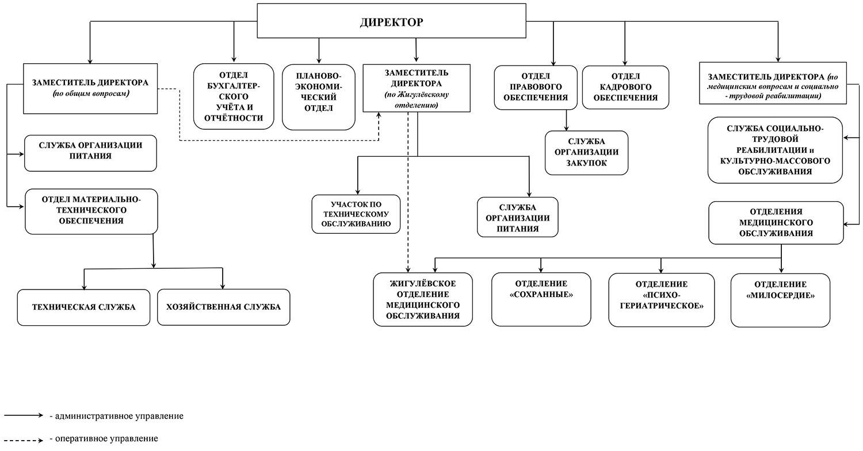 Структура и органы управления ГБУ СО